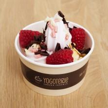 višňový frozen yogurt s malinami a čokoládovými hoblinkami